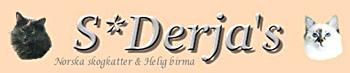 LogoDerja