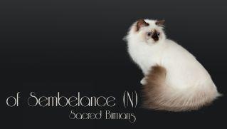 Sembelance