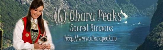 Uhuru-Banner