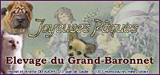 banner_grandbaronet1