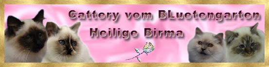 banner_vom_bluetengarten
